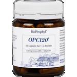 BioProphyl OPC120® plus Acerola 60 pflanzliche Kapseln mit je 120 mg reinem OPC plus natürlichem Vitamin C