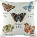 Evans Lichfield Species Butterfly Cushion Cover (One Size) (Multicoloured)