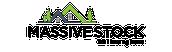 massive-stock.dk Logo