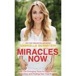 Miracles Now (Häftad, 2014), Häftad