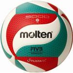 Volleyball Molten 5M5000