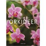 Politikens bog om orkideer, Hardback