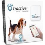 Gps tracker hund Kæledyr Tractive GPS Tracker Til Kæledyr