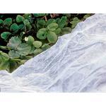 Dyrkning Willab Garden Nonwoven 2.1x9.6m