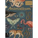 Animalium Bøger Animalium, Hardback