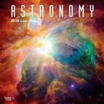 2018 Astronomy Wall Calendar (Övrigt format, 2017)
