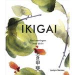 Ikigai: Find meningen med livet find dine ikigai (Indbundet, 2019)