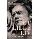 Et lille liv (Paperback, 2019)