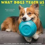 What Dogs Teach Us 2021 Wall Calendar (Kalender, Calendar)