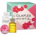 Olaplex No.3 + No.7 + Lip Balm Giftset