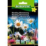 Hornum Blanding Blomstereng