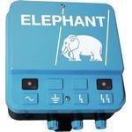 Elephant M40