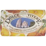 Kropssæbe Kropssæbe Nesti Dante Dolce Vivere Capri Soap 250g