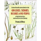 Bøger Colour Identification Guide to the Grasses, Sedges, Rushes and Ferns of the British Isles and North Western Europe