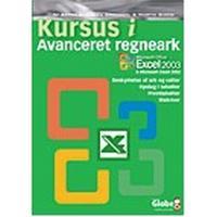 Kursus i avanceret regneark: Excel 2002/2003, E-bog
