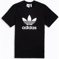 Adidas t shirt </p>                     </div>   <!--bof Product URL --> <!--eof Product URL --> <!--bof Quantity Discounts table --> <!--eof Quantity Discounts table --> </div>                        </dd> <dt class=
