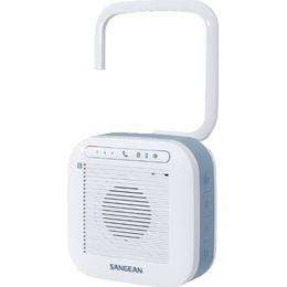 Sangean H200