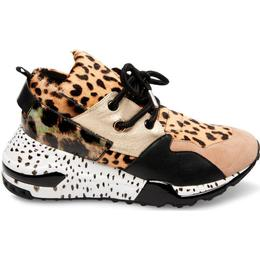 Steve Madden Cliff W - Animal