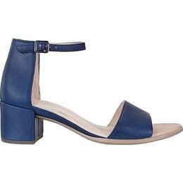 Ecco Shape Block 35 - Blue