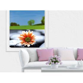 Sichtschutz Glasfolie Glasfenster farbig für Wohnzimmer Blüte Stein Blume