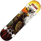 "Komplette skateboards Tony Hawk Signature Series 180 Hawk Roar 7.75"""
