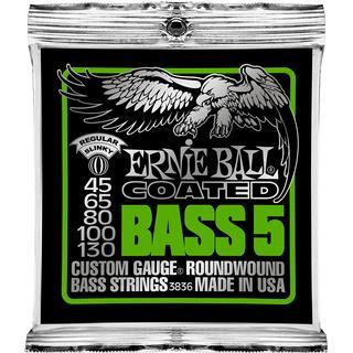 Ernie Ball P03836