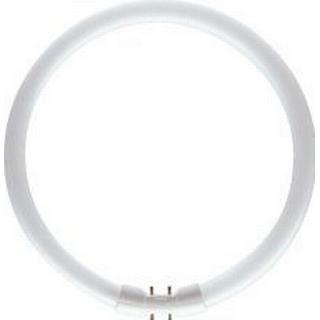 Philips Master TL5 - 2GX13 Cirkel Pære