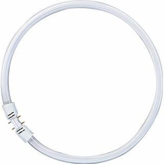 Osram Lumilux T5 FC Fluorescent Lamp 22W 2GX13 865