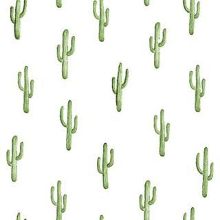 Midbec Cactus (138899)