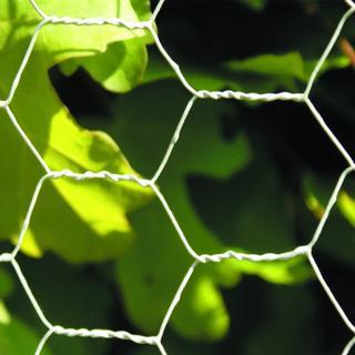 NSH Nordic Hexagonal Wire 5mx60cm 106-604