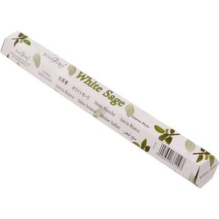 Stamford White Sage Hex Incense Sticks 20-pack