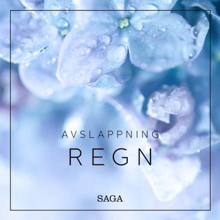Avslappning - Regn (Lydbog MP3, 2019)