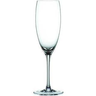 Spiegelau Cantina Champagneglas 21 cl 12 stk