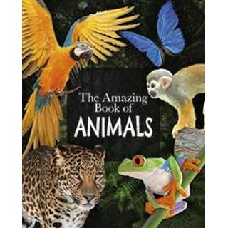 The Amazing Book of Animals (Hæfte, 2019)