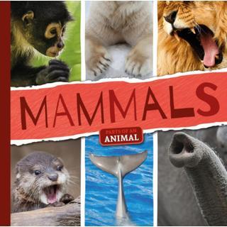 Mammals (Bog, Hardback)