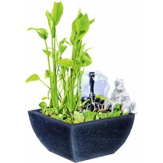 HEISSNER Water Garden Set 015185-00