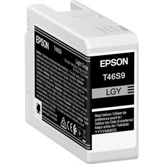 Epson T46S9 (Light Gray)