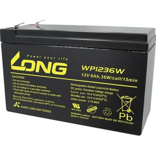 WP1236W Compatible