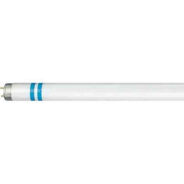 Philips TL-D Secura Fluorescent Lamp 36W G13 840