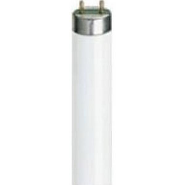Sylvania 0000578 Fluorescent Lamp 36W G13