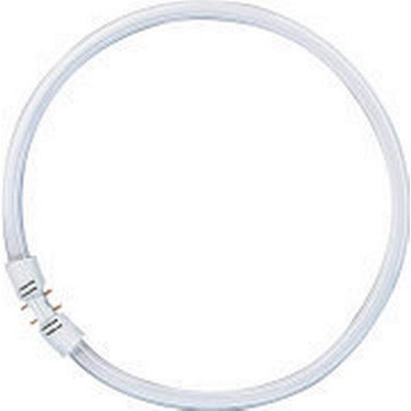 Osram Lumilux T5 FC Kompaktrør Cirkel 22W 2GX13 830