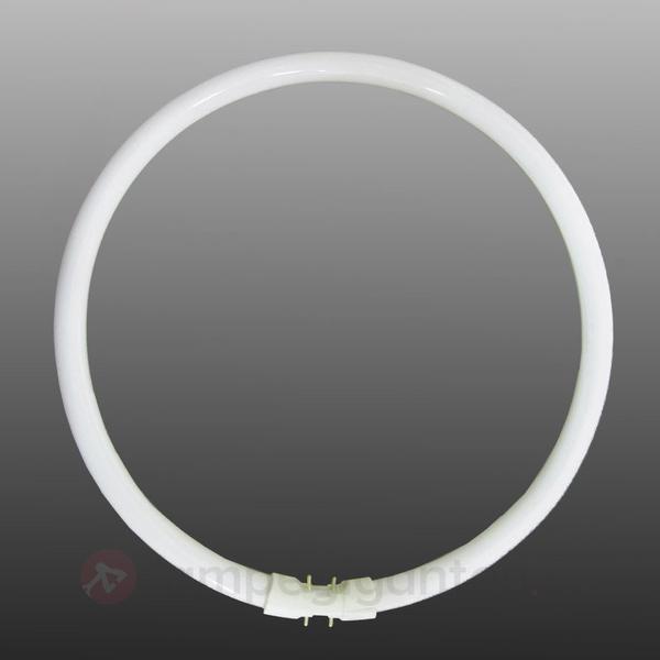 Sylvania 0000524 Fluorescent Lamp 40W 2GX13