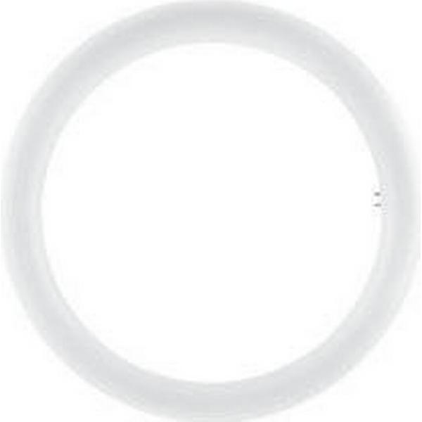 Osram ST9-EM LED Lamps 20W G10q