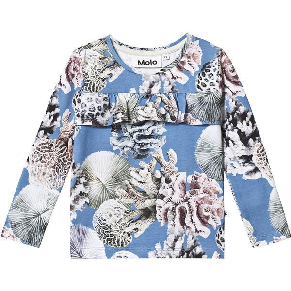 Molo Rosita - Coral Reef (2S19A410 4179)