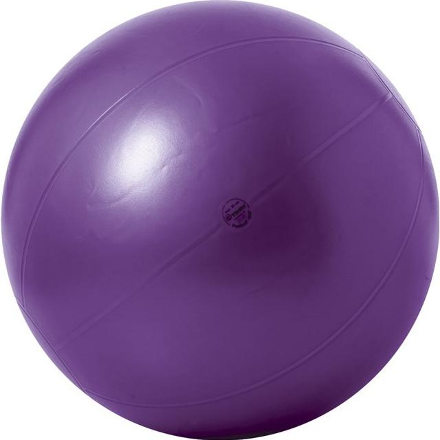 Togu Theragym Ball ABS 85cm