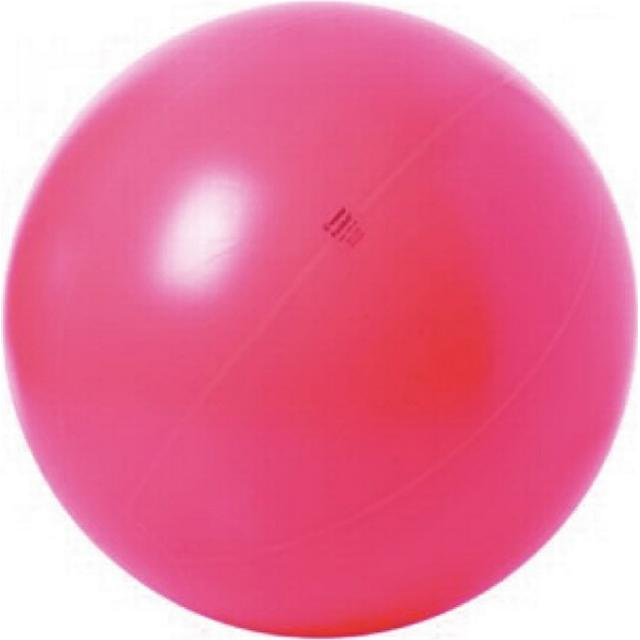 Togu Theragym Ball ABS 100cm
