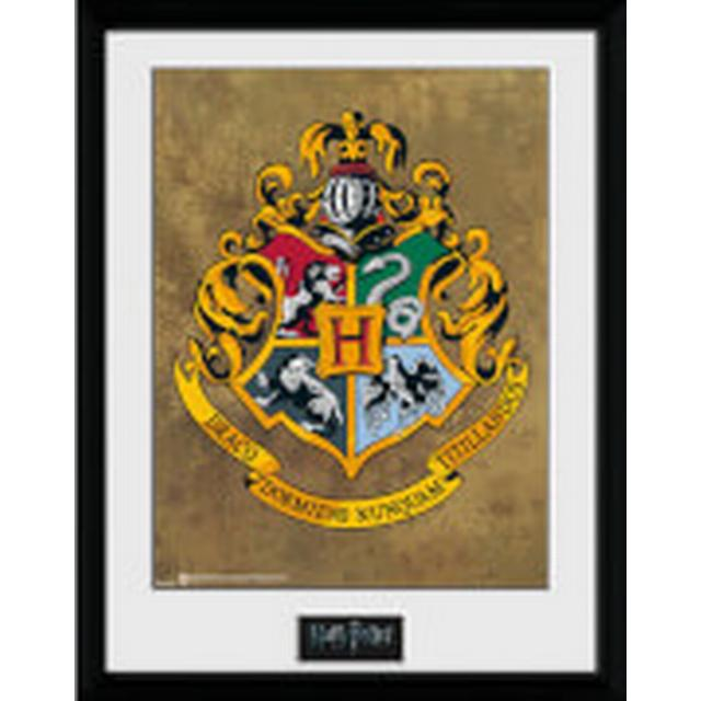 GB Eye Harry Potter Hogwarts 30x40cm Maleri & billede
