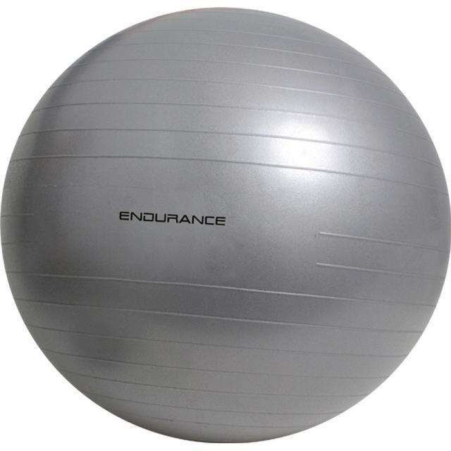 Endurance Gym Ball 65cm