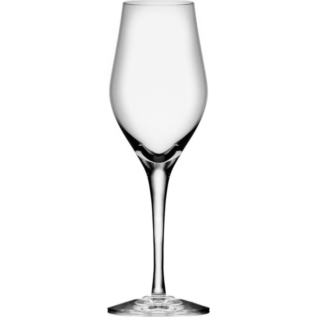 Orrefors Sense Champagneglas 25.5 cl 6 stk