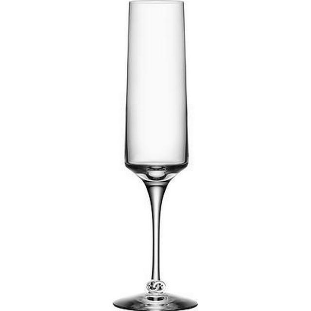Orrefors Symbols Champagneglas 18 cl 2 stk
